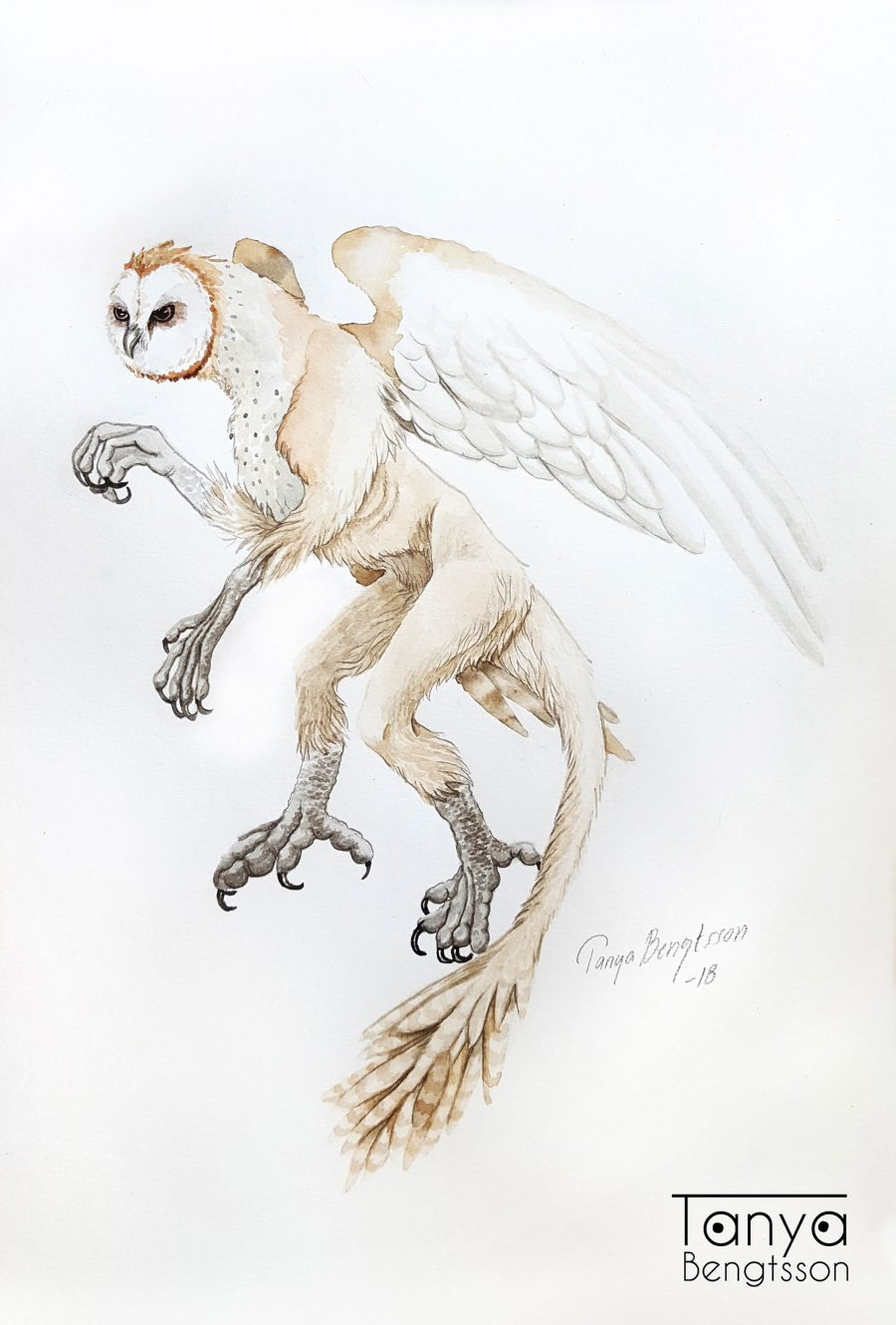 An illustration of a fantasy creature. A mic between a monkey and an owl.