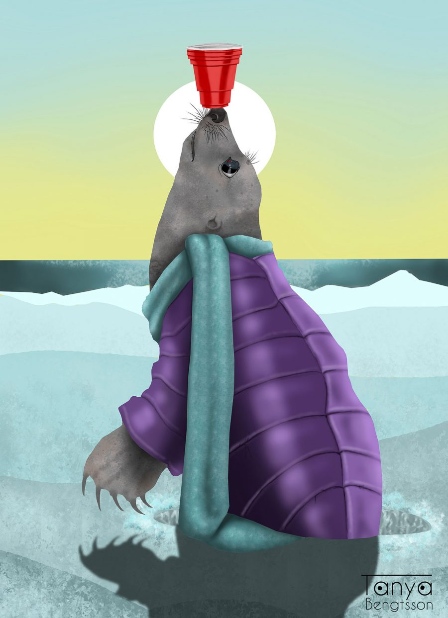 An illustration of a seal balancing a red cup on its nose. The seal is wearing a purple parkas and a turquoise scarf.