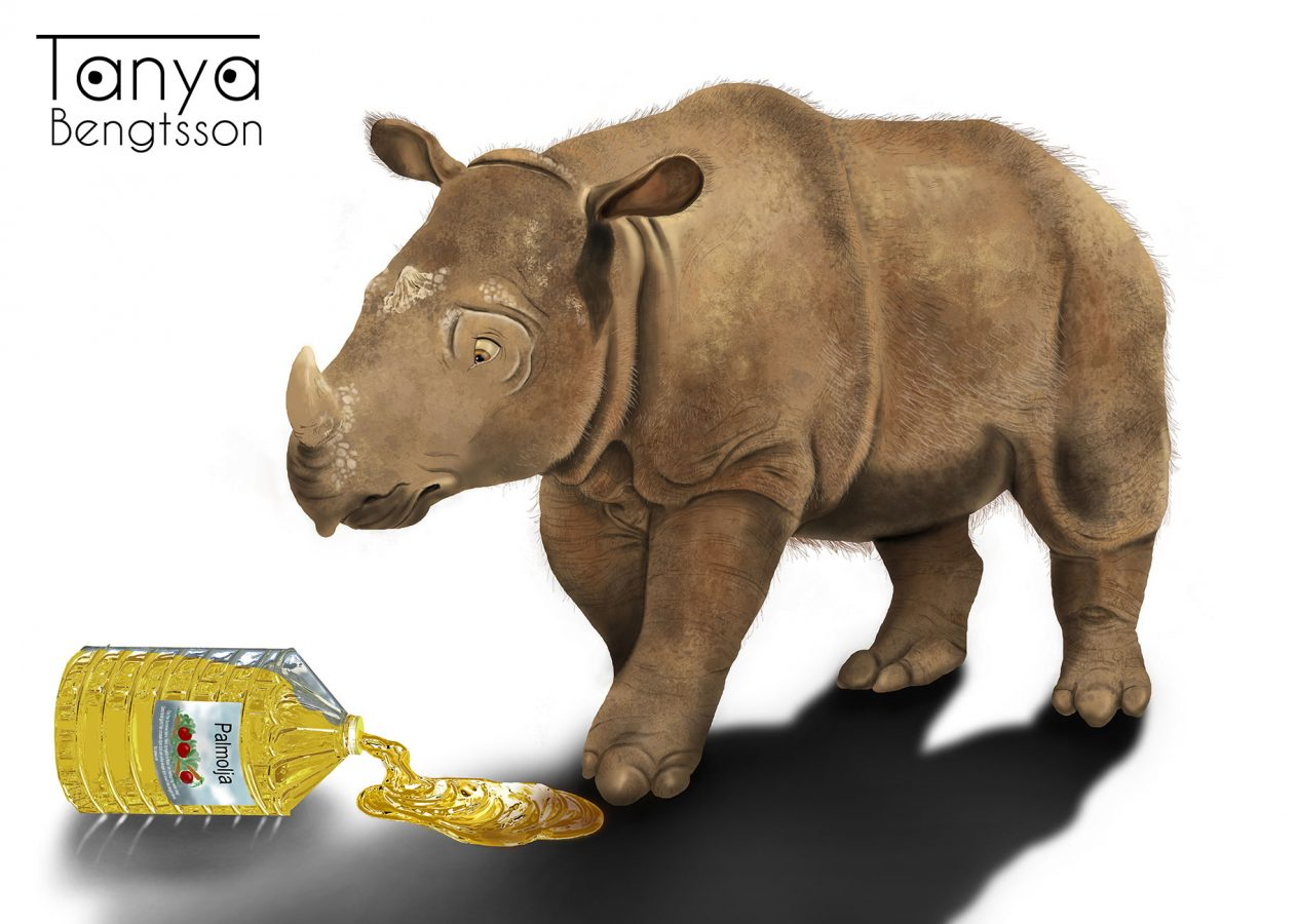 An illustration of a sumatran rhino looking down on spilled palm oil.